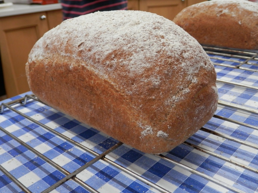 Light Rye Bread - well risen and well-shaped
